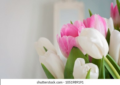 A closeup of white and pink tulips were used as a Spring interior decoration