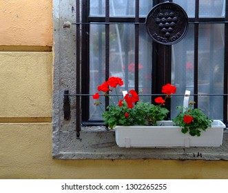"Closeup of window in Eger, Hungary with red geraniums and sign ""Metsz Eger"" (pruning Eger)"