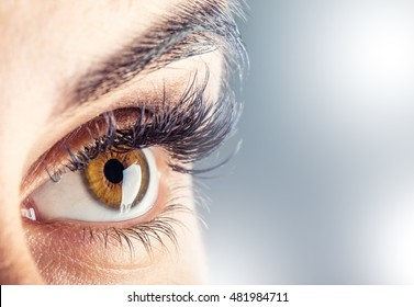 Close-up of woman eye.