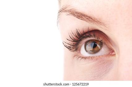 closeup of woman eye background