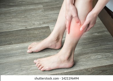 Closeup of woman hands holding and massage her calf, suffering from calf pain. Calf pain may be muscle-related diagnoses, there are some potentially serious ones , like a blood clot or claudication.