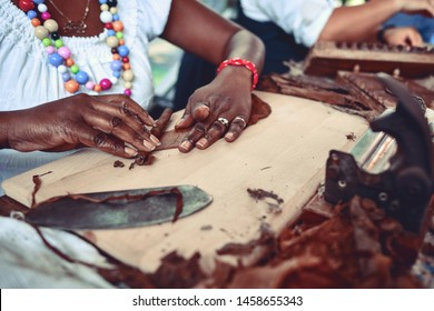 Closeup of woman hands making cigar from tobacco leaves. Traditional manufacture of cigars.