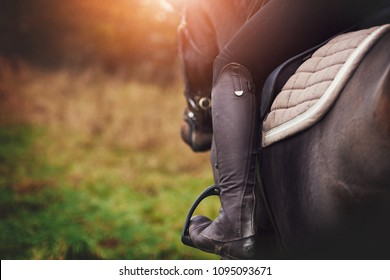 Closeup of a woman in riding gear sitting in a saddle on a chestnut horse horse while out for ride in the countryside in autumn