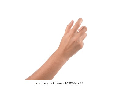 Hands Png Hd Stock Images Shutterstock Choose from 360000+ hand graphic resources and download in the form of png, eps, ai or psd. https www shutterstock com image photo close womans hand holding turning something 1620568777