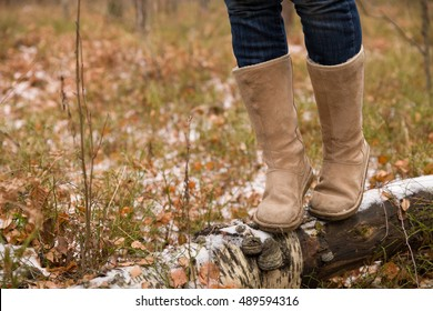 Closeup of woman's legs walking on log in the forest. Girl balancing on fallen old tree.