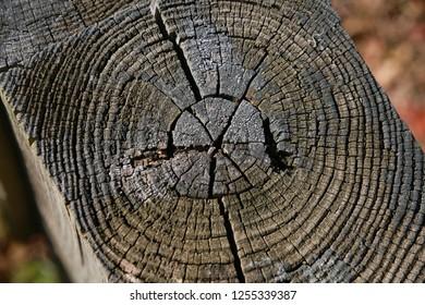 Timber Guard Rail Images, Stock Photos & Vectors   Shutterstock