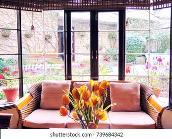 Closeup wooden classical sofa with rattan and fabric texture design in living room with vase of orange tulips on table, glass window see flowers in the garden, interior in natural cozy style concept