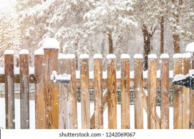 Closeup of wooden fence gate with lock, locked latch covered in white snow at heavy snowing snowstorm, storm, falling snowflakes by house, home with forest in background with sun, sunlight, warm light
