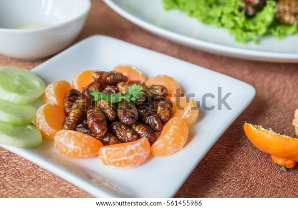 Closeup Woodworm edible fried insect and orange on white plate.  Insects are full of protein, vitamins and minerals delicious are popular in Thailand
