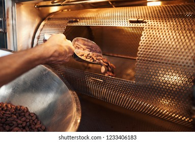 Closeup of a worker in an artisanal chocolate making factory scooping cocoa beans from a bowl into a roasting machine