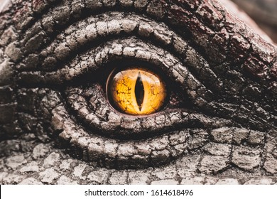 Closeup yellow eye of the dinosaurs with terrifying. Dinosaur hunters are staring with horrible yellow eye. Dinosaur eye.