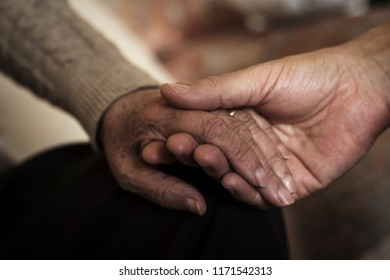closeup of a young caucasian man holding the hand of an old caucasian woman with affection