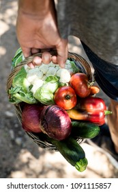 closeup of a young caucasian man, seen from behind, with a rustic basket full of vegetables freshly collected in an organic orchard