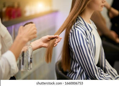 closeup of young girl's long hair and hairdresser hands holding them going to cut split ends. Beauty, hair concept