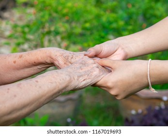 Close-up of young woman's hands holding an elderly woman hands. Granddaughter touching hands her grandmother in the garden.