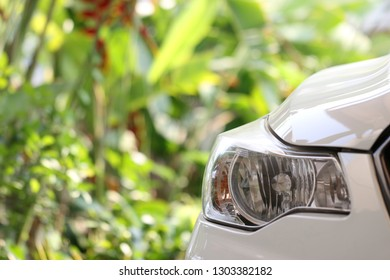 Closeups on  Front head light of white car that parking among green nature garden.