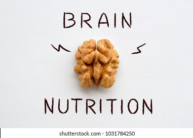 Closup photo of a walnut seed. Food that is good for brain. Walnut resembling human brain