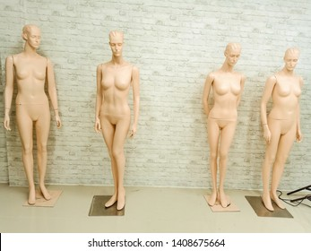 Clothes mannequins Prepared to be used in modern foreign trade shows