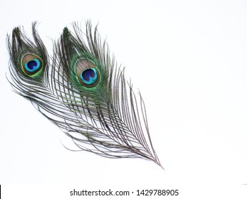 Clothing and home decoration. Peacock feathers on white background.