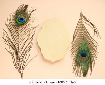 Clothing and home decoration. Peacock's feathers and wooden frame on light pink background. Top view with place for text.