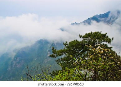 Cloud floating around the mountain in Lushan national park Jiangxi province China