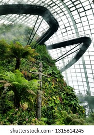 Cloud Forest, Gardens by the Bay, Singapore - Jan 24th, 2019 - a coolest attraction with its spiralling walkways and the world's tallest indoor waterfall