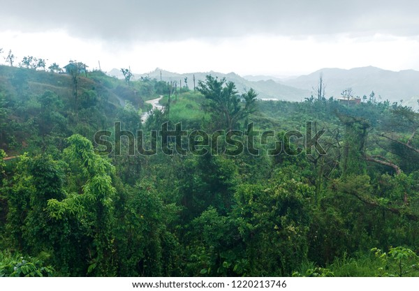 cloud forest and mountains of cordillera central in jayuya puerto rico
