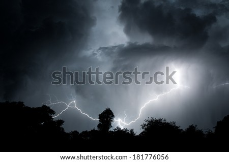 Cloud to ground lightning sweeping across the night skies silhouetting the tree line