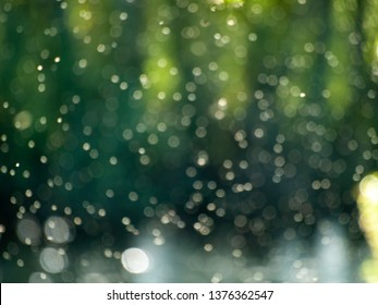 A cloud of mosquitoes beside the river on a bokeh background