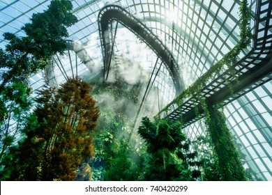 """Cloud Mountain"" at Gardens By the Bay's Cloud Forest Dome. Singapore. May 7, 2017"