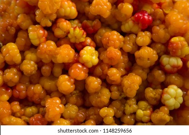 Cloudberries. Bowl with the collected fresh cloudberries