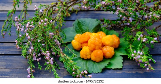 Cloudberries with leaves on wood table Delicious wild food from Lapland