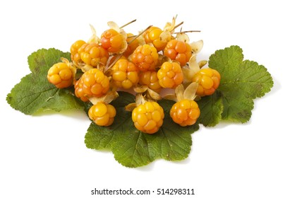 cloudberry with leaves isolated on white background