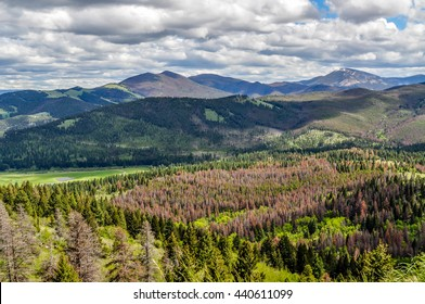 Clouds cast shadows on the pine forested mountains south of Helena, Montana.