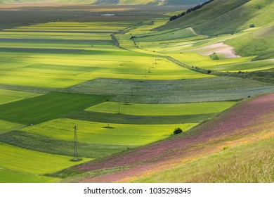Clouds casting shadows on colorful lentils fields in Castelluccio di Norcia