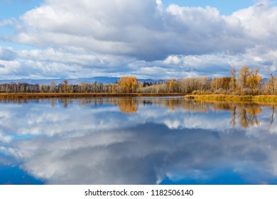 Clouds and color reflected in the calm waters of a slough in autumn