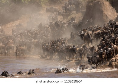 Clouds of dust along Mara river during Wildebeests crossing
