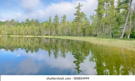 Clouds reflected in Bright Lake, in Hartwick Pines State Park, near Grayling, Michigan.