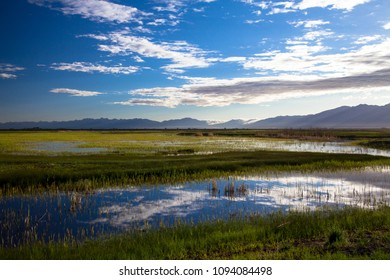 Clouds reflected in the marsh at dawn at Alamosa National Wildlife Refuge in southern Colorado