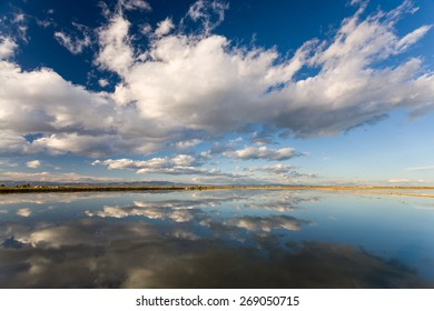 Clouds reflected on rice paddy in the Ebro Delta with golden light