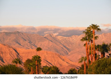 Clouds roll over colorful desert mountains fronted by an array of green palm trees.