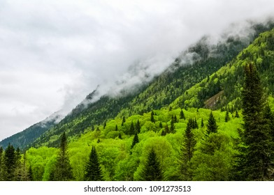 Clouds rolling over mountain's edge on a rainy Spring day, Jacques Cartier national park, Quebec, Canada