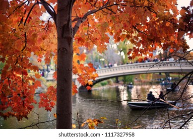 Cloudy autumn day at The Lake in Central Park with the Bow Bridge in the background in New York, New York