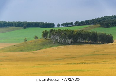 cloudy autumn landscape, view of fields and forests.