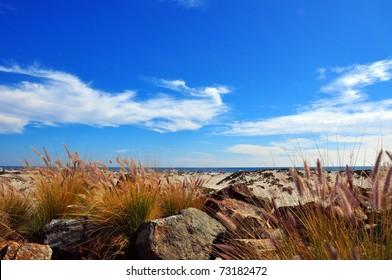 Cloudy blue sky at the beach