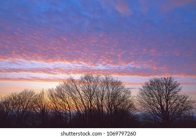A cloudy and colourful purple and pink sunset sky over the downs of Herefordshire, UK. Silhouetted trees sit in  the foreground.
