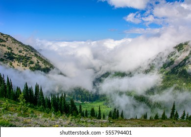 Cloudy landscape in mountains, Olympic National Park, Washington, USA
