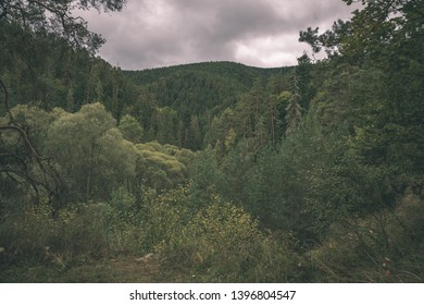 cloudy and misty Slovakian Western Carpathian Tatra Mountain skyline covered with forests and trees in early autumn colors - vintage retro look