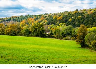 A cloudy October walk around Headley Heath in Surrey south east England
