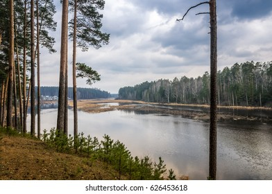 cloudy and rainy day in the forest on the banks of the river Pyshma, Russia, the Urals, April